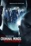 Мыслить как преступник: Поведение подозреваемого (Criminal Minds: Suspect Behavior)