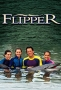 Flipper (-)