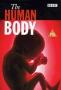 Тело человека (The Human Body)