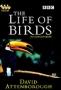 BBC: Жизнь птиц (The Life of Birds)