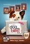 Собака точка ком (Dog with a Blog)