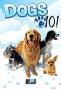 Введение в собаковедение (Dogs 101)