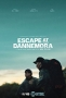 Побег из тюрьмы Даннемора (Escape at Dannemora)