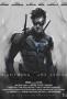 Ночное Крыло (Nightwing: The Series)