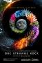 Неизвестная планета Земля (One Strange Rock)