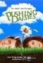 Мертвые до востребования (Pushing Daisies)