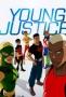 Юная Лига Справедливости (Young Justice)