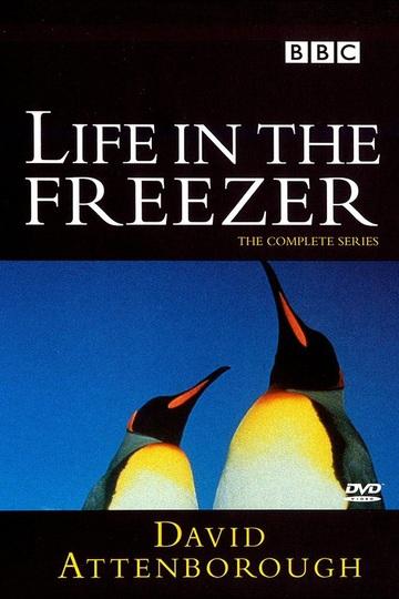 Жизнь в морозильнике / Life in the Freezer (сериал)