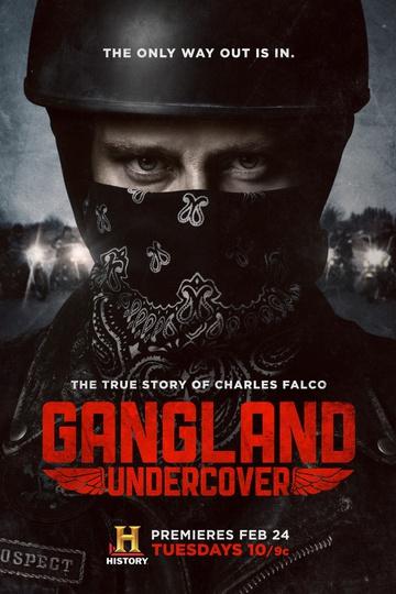 Под прикрытием / Gangland Undercover (сериал)