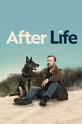 After Life (show)