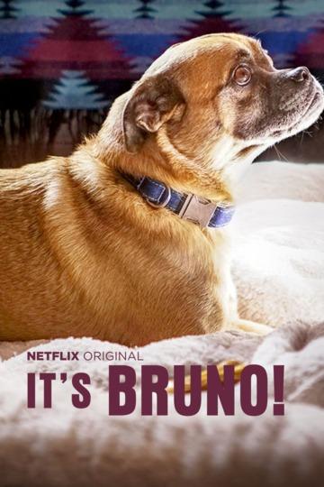 Это Бруно! / It's Bruno! (сериал)