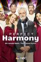 Идеальная гармония (Perfect Harmony)