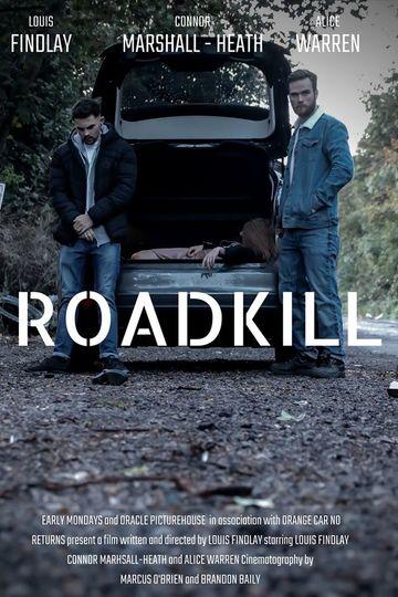 Скользкий путь / Roadkill (сериал)