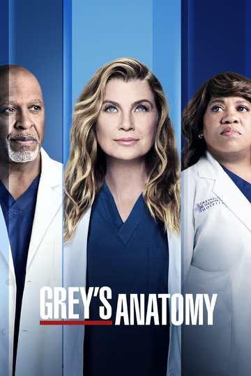 Анатомия страсти / Grey's Anatomy (сериал)